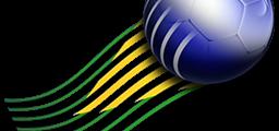 brasileirao_2011_logo